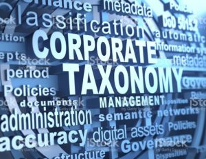 corporate-taxonomy